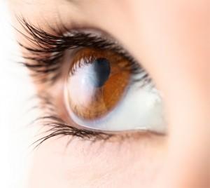 Stimulation de la vue